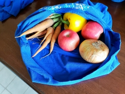 """Zero-Dollar Zero Waste Starter Kit:"" Part 1 – Reusable Bag"